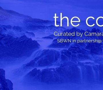 white text on strong blue background over a photo of waves pouring over a rocky seashore. Text reads: 'the cold. Curated by Camara Taylor. SBWN partnership with MAP.'